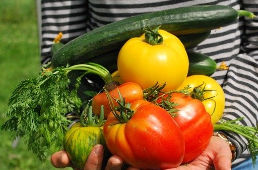 Ubezpieczenie warzyw!...