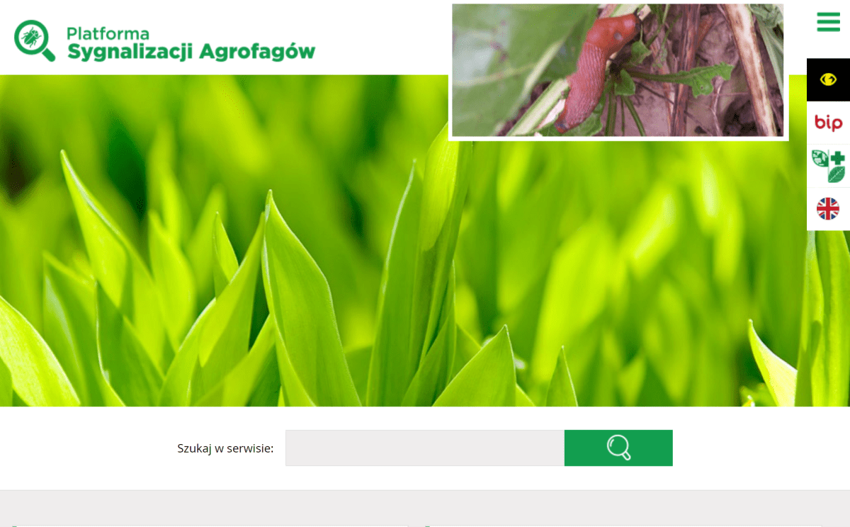 Platforma Sygnalizacji Agrofagów – użyteczne narzędzie ...