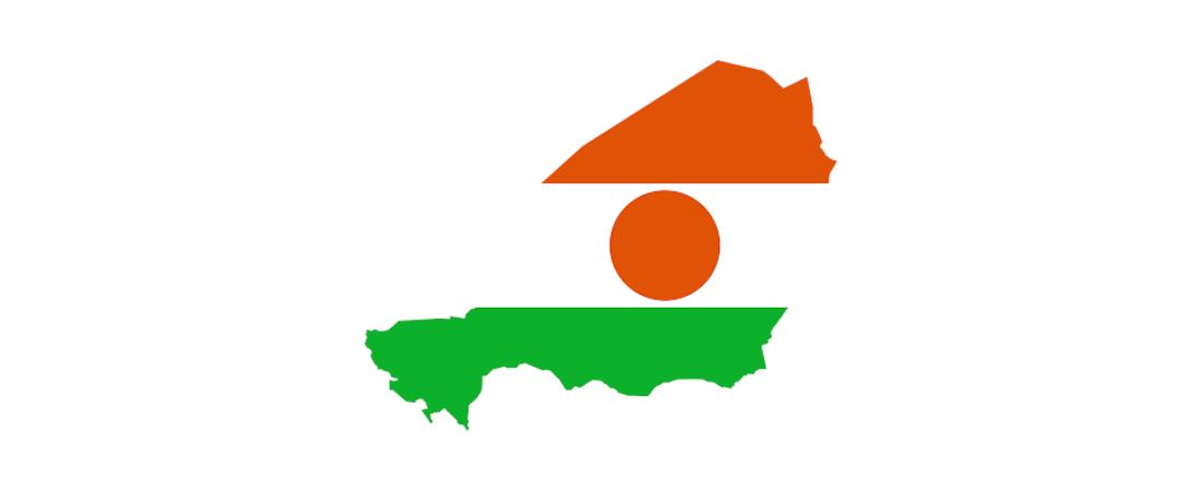 Niger: ponad 100 mln dolarów na transformację cyfrową r...