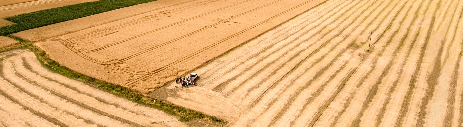 Projekt eDWIN, czyli rolnictwo przyszłości na naszych o...